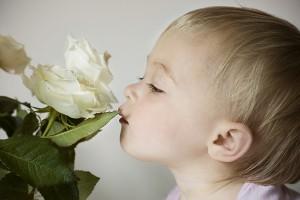 влияние запаха фото